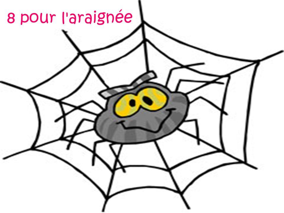 8 pour l araignée