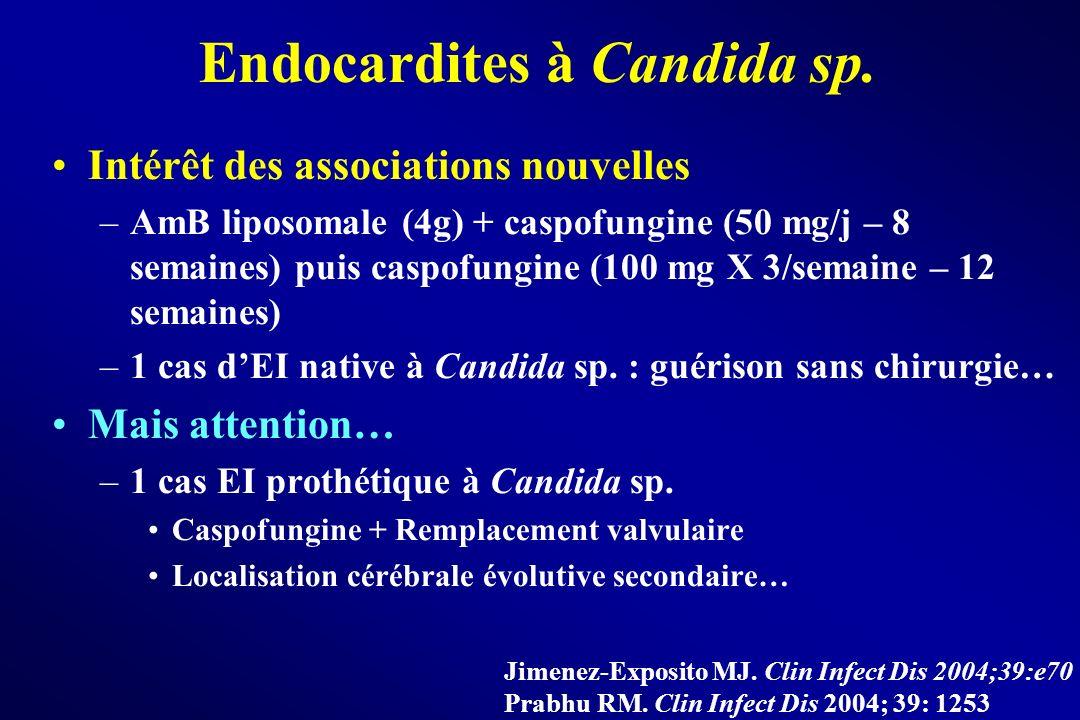 Endocardites à Candida sp. Intérêt des associations nouvelles –AmB liposomale (4g) + caspofungine (50 mg/j – 8 semaines) puis caspofungine (100 mg X 3