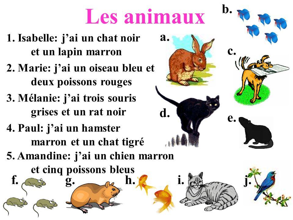 Les animaux 1. Isabelle: jai un chat noir et un lapin marron 2. Marie: jai un oiseau bleu et deux poissons rouges 3. Mélanie: jai trois souris grises