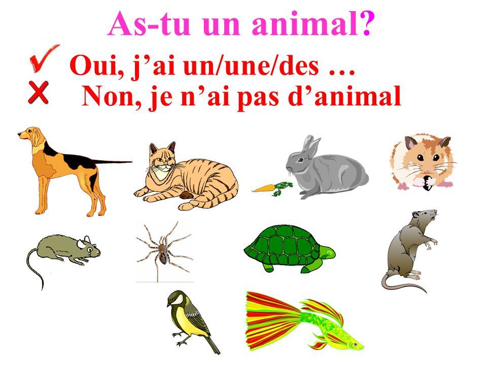 As-tu un animal? Oui, jai un/une/des … Non, je nai pas danimal