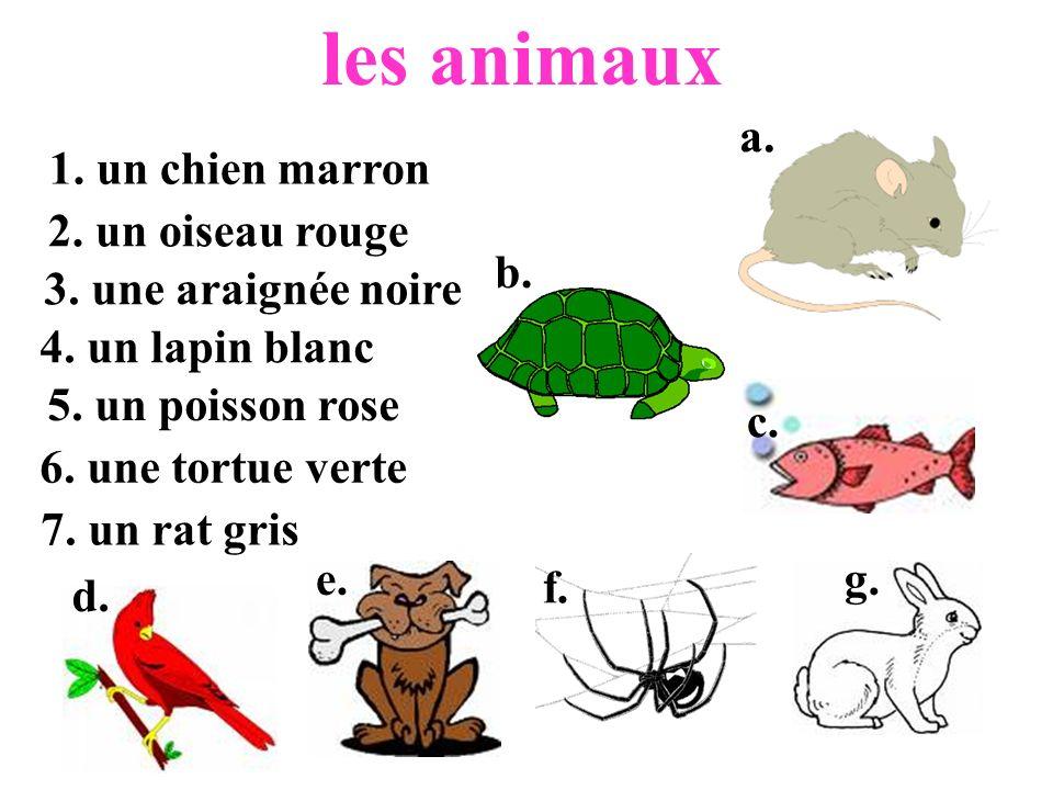 les animaux 1. un chien marron 2. un oiseau rouge 3. une araignée noire 4. un lapin blanc 5. un poisson rose 6. une tortue verte 7. un rat gris a. b.