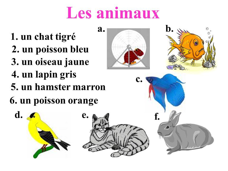 Les animaux 1. un chat tigré 2. un poisson bleu 3. un oiseau jaune 4. un lapin gris 5. un hamster marron 6. un poisson orange a.b. c. d.e. f.