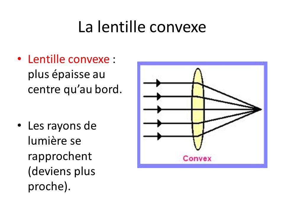 La lentille convexe Lentille convexe : plus épaisse au centre quau bord. Les rayons de lumière se rapprochent (deviens plus proche).