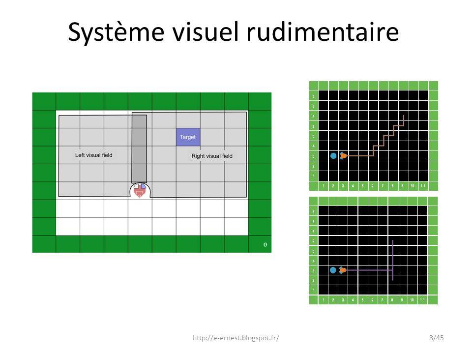 Système visuel rudimentaire http://e-ernest.blogspot.fr/8/45