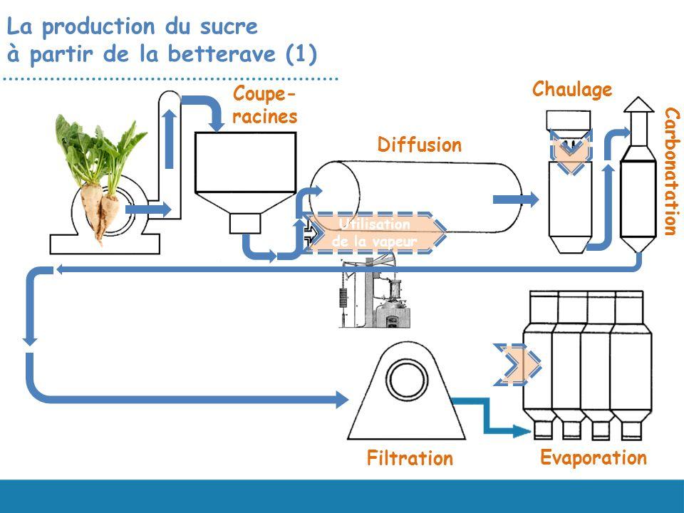 La production du sucre à partir de la betterave (1) Evaporation Filtration Chaulage Carbonatation Diffusion Coupe- racines Utilisation de la vapeur