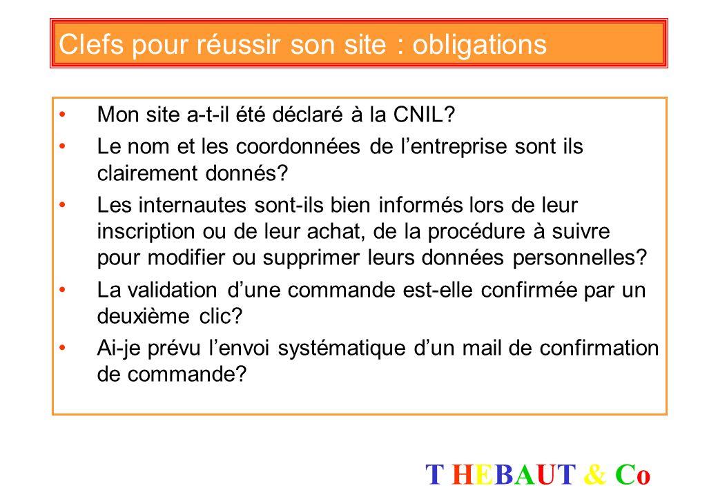T HEBAUT & CoT HEBAUT & Co Clefs pour réussir son site : la vente Mon canal Internet est-il en adéquation avec les autres canaux de distribution? Comm