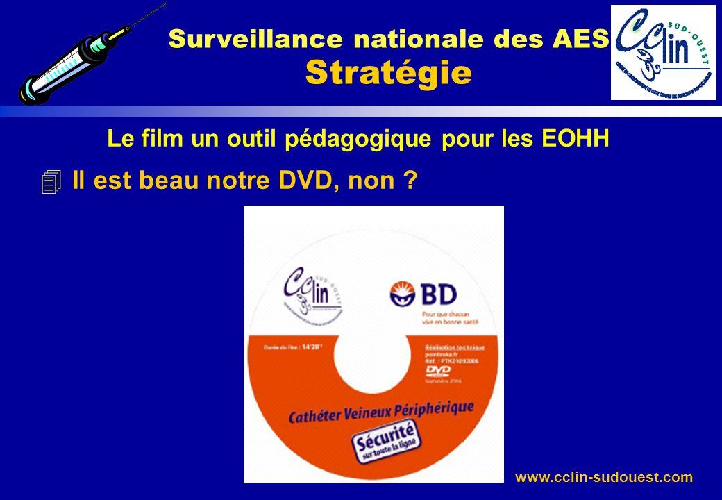 www.cclin-sudouest.com Le film un outil pédagogique pour les EOHH 4 Il est beau notre DVD, non ? Surveillance nationale des AES Stratégie