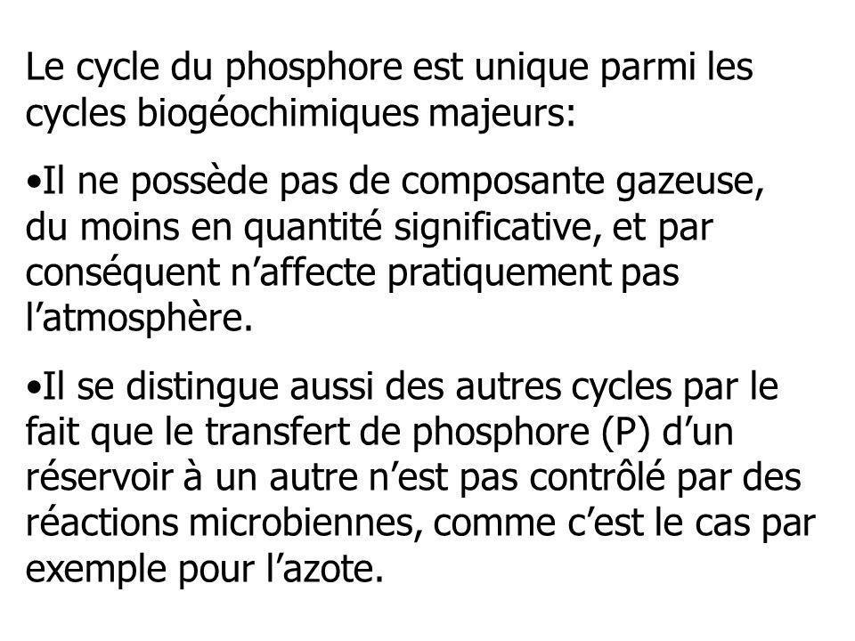 Le cycle du phosphore est unique parmi les cycles biogéochimiques majeurs: Il ne possède pas de composante gazeuse, du moins en quantité significative