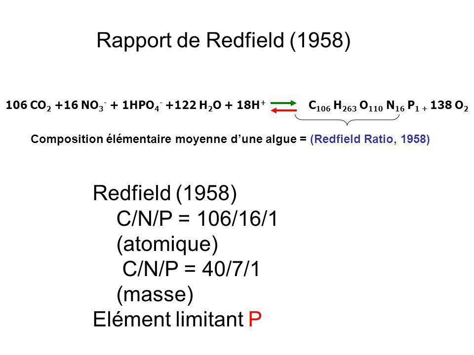 106 CO 2 +16 NO 3 - + 1HPO 4 - +122 H 2 O + 18H + C 106 H 263 O 110 N 16 P 1 + 138 O 2 Composition élémentaire moyenne dune algue = (Redfield Ratio, 1