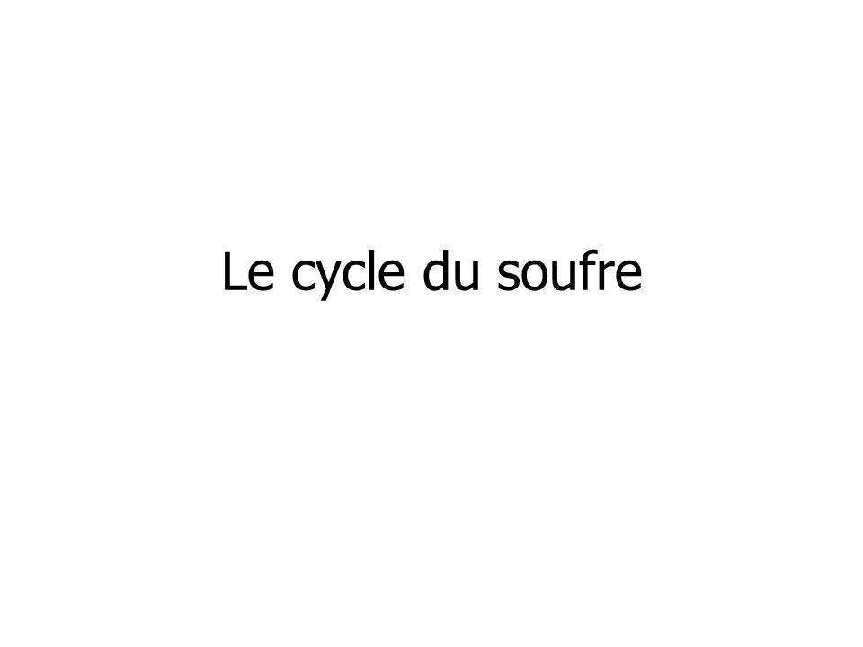 Le cycle du soufre