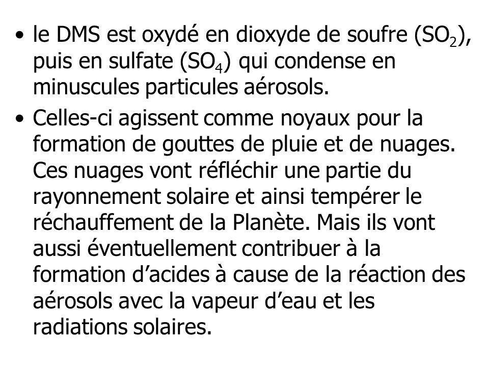le DMS est oxydé en dioxyde de soufre (SO 2 ), puis en sulfate (SO 4 ) qui condense en minuscules particules aérosols. Celles-ci agissent comme noyaux