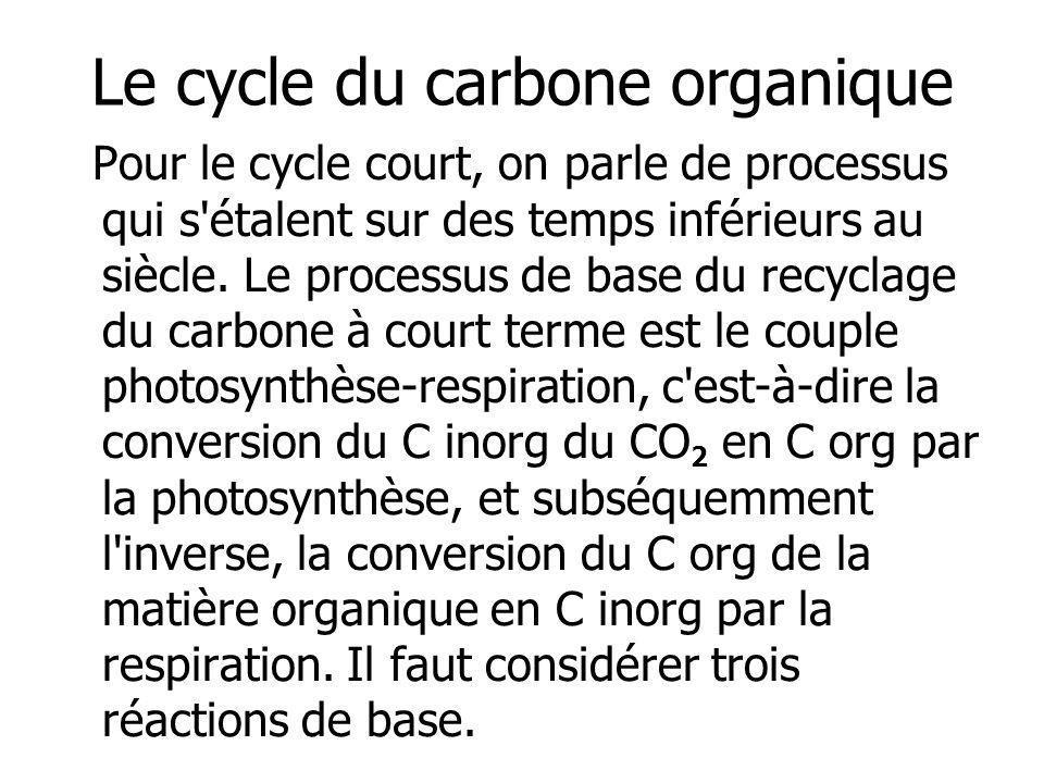 Le cycle du carbone organique Pour le cycle court, on parle de processus qui s'étalent sur des temps inférieurs au siècle. Le processus de base du rec