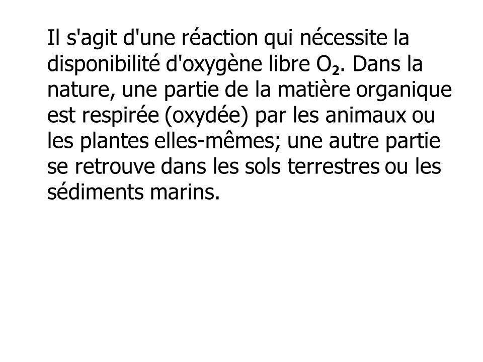 Il s'agit d'une réaction qui nécessite la disponibilité d'oxygène libre O 2. Dans la nature, une partie de la matière organique est respirée (oxydée)