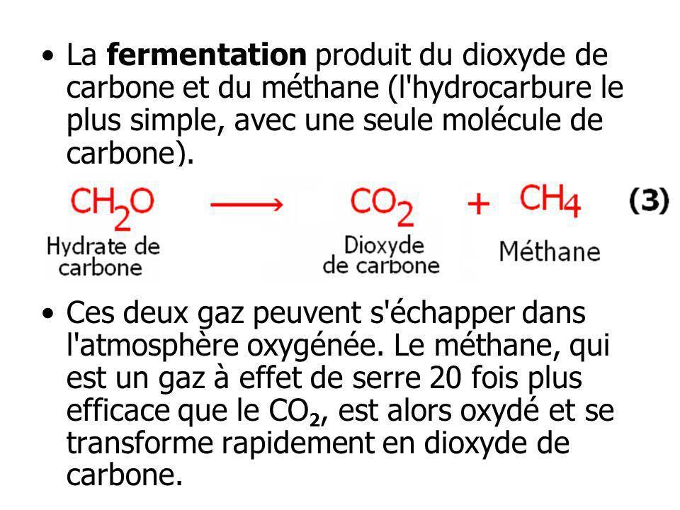 La fermentation produit du dioxyde de carbone et du méthane (l'hydrocarbure le plus simple, avec une seule molécule de carbone). Ces deux gaz peuvent
