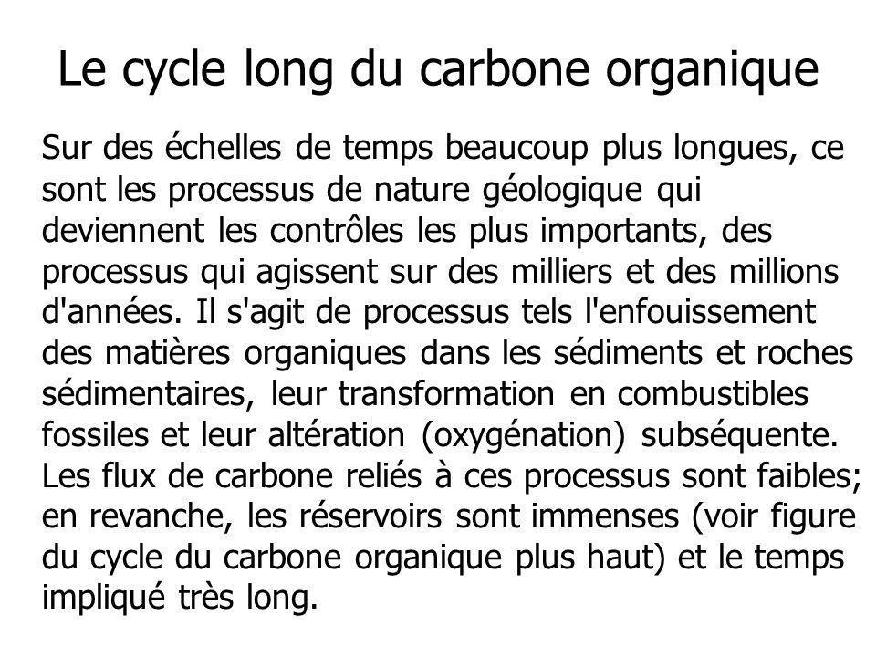 Le cycle long du carbone organique Sur des échelles de temps beaucoup plus longues, ce sont les processus de nature géologique qui deviennent les cont