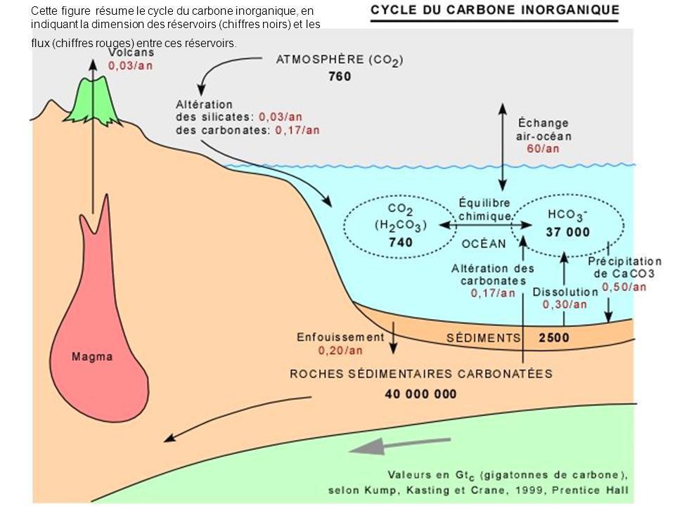 Cette figure résume le cycle du carbone inorganique, en indiquant la dimension des réservoirs (chiffres noirs) et les flux (chiffres rouges) entre ces
