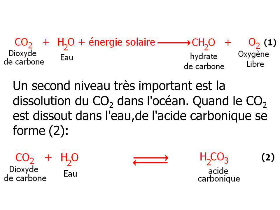 Un second niveau très important est la dissolution du CO 2 dans l'océan. Quand le CO 2 est dissout dans l'eau,de l'acide carbonique se forme (2):