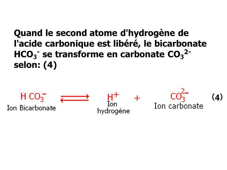 Quand le second atome d'hydrogène de l'acide carbonique est libéré, le bicarbonate HCO 3 - se transforme en carbonate CO 3 2- selon: (4)