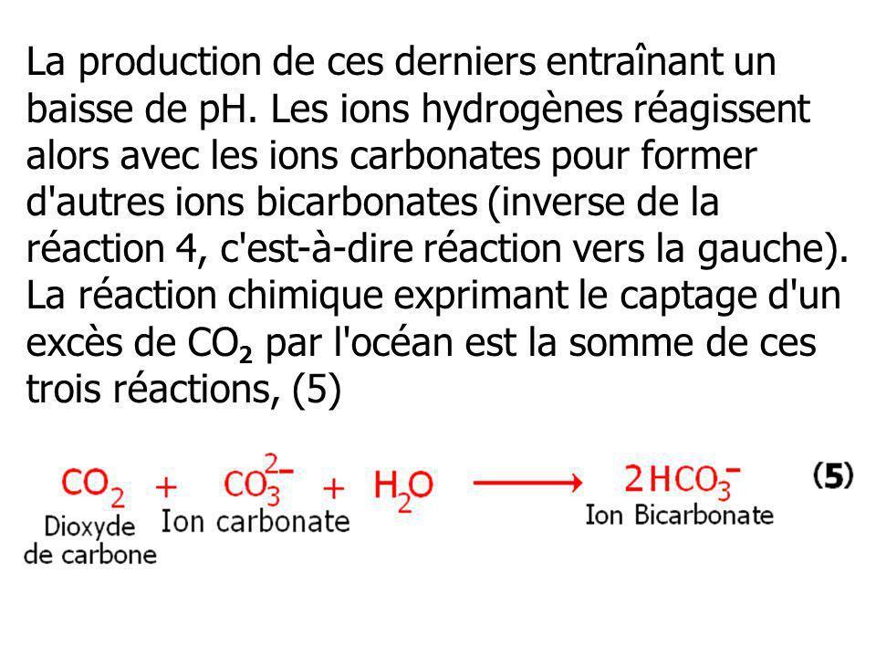La production de ces derniers entraînant un baisse de pH. Les ions hydrogènes réagissent alors avec les ions carbonates pour former d'autres ions bica