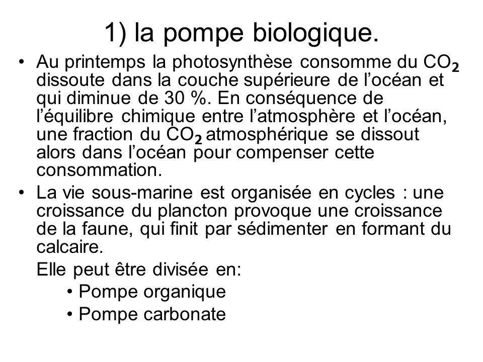 1) la pompe biologique. Au printemps la photosynthèse consomme du CO 2 dissoute dans la couche supérieure de locéan et qui diminue de 30 %. En conséqu