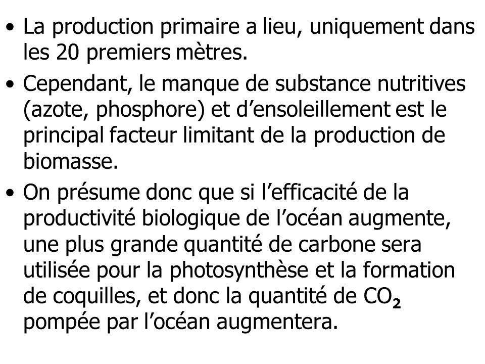 La production primaire a lieu, uniquement dans les 20 premiers mètres. Cependant, le manque de substance nutritives (azote, phosphore) et densoleillem