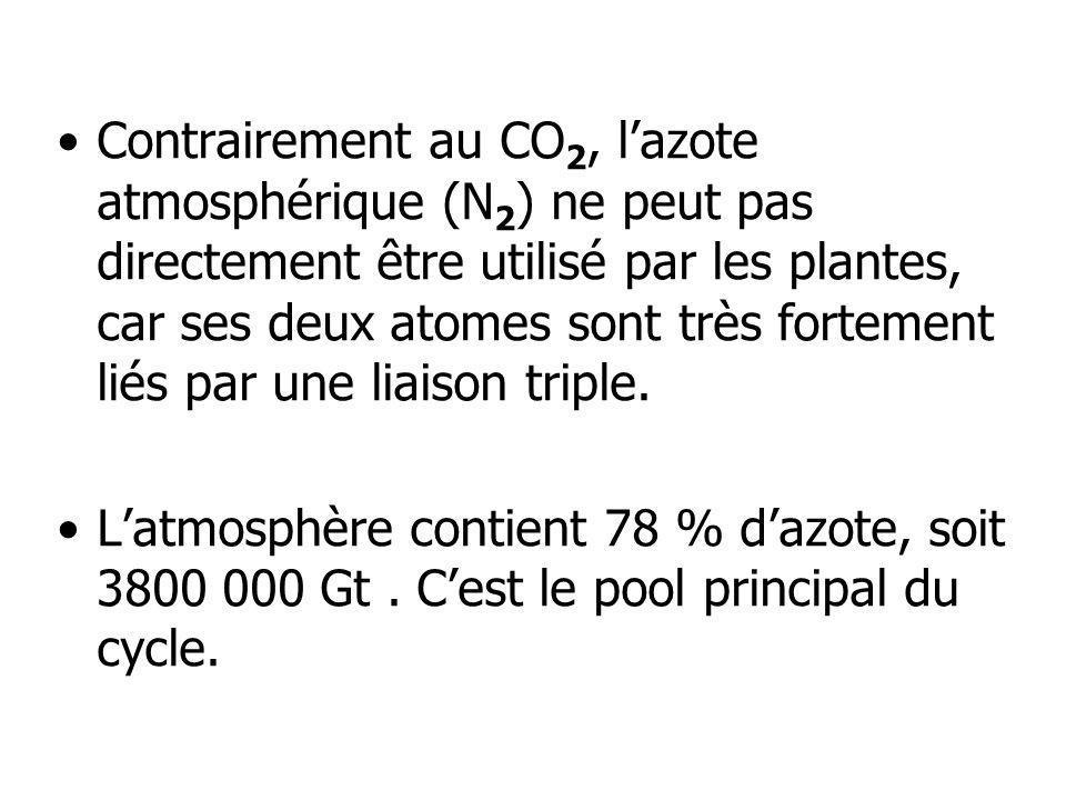 Contrairement au CO 2, lazote atmosphérique (N 2 ) ne peut pas directement être utilisé par les plantes, car ses deux atomes sont très fortement liés