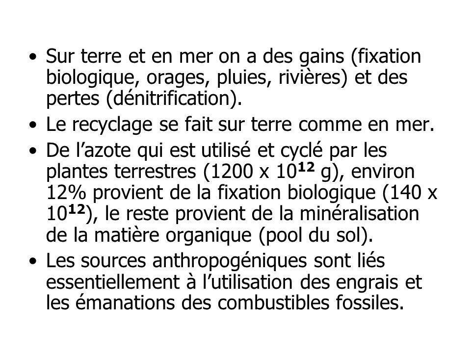 Sur terre et en mer on a des gains (fixation biologique, orages, pluies, rivières) et des pertes (dénitrification). Le recyclage se fait sur terre com