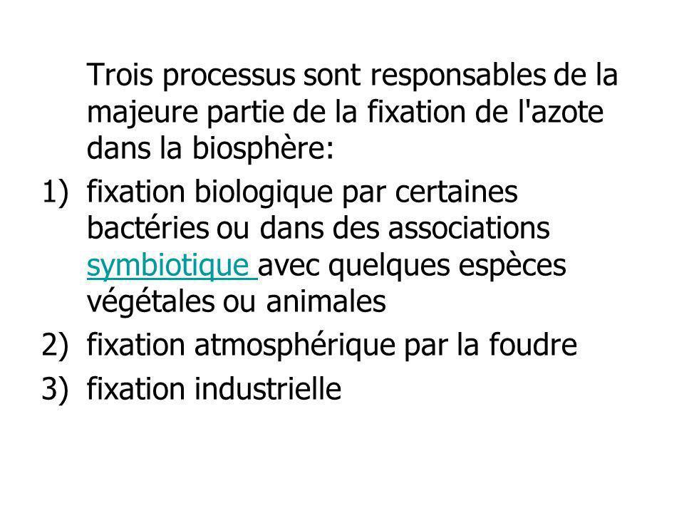 Trois processus sont responsables de la majeure partie de la fixation de l'azote dans la biosphère: 1)fixation biologique par certaines bactéries ou d