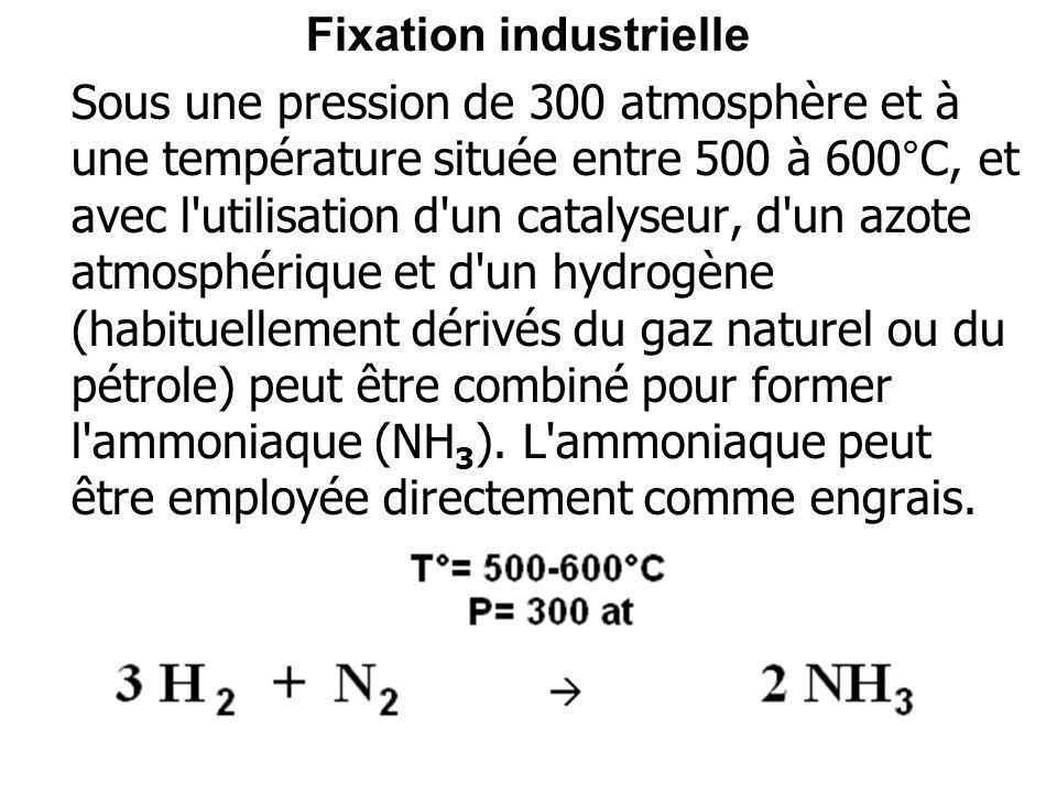 Fixation industrielle Sous une pression de 300 atmosphère et à une température située entre 500 à 600°C, et avec l'utilisation d'un catalyseur, d'un a
