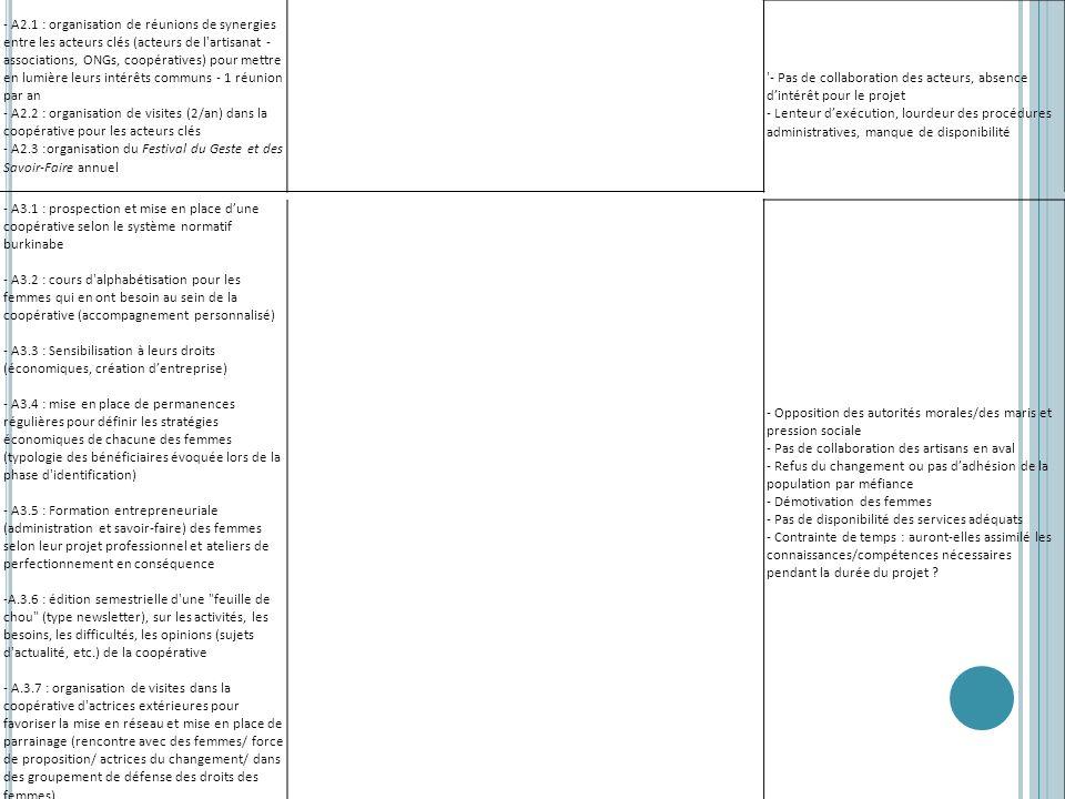 - A2.1 : organisation de réunions de synergies entre les acteurs clés (acteurs de l'artisanat - associations, ONGs, coopératives) pour mettre en lumiè