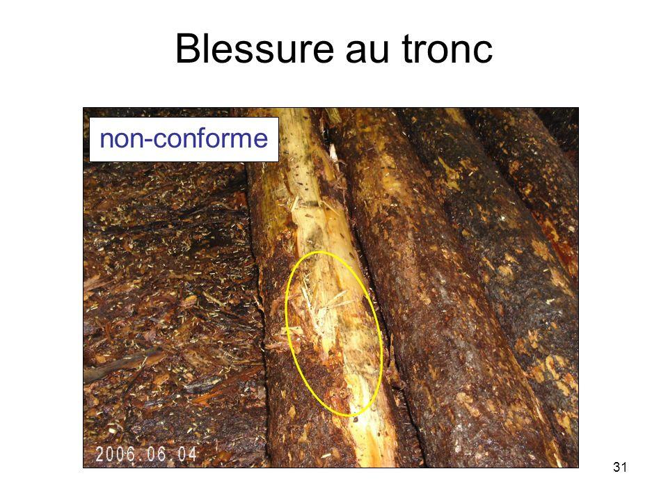 31 Blessure au tronc non-conforme