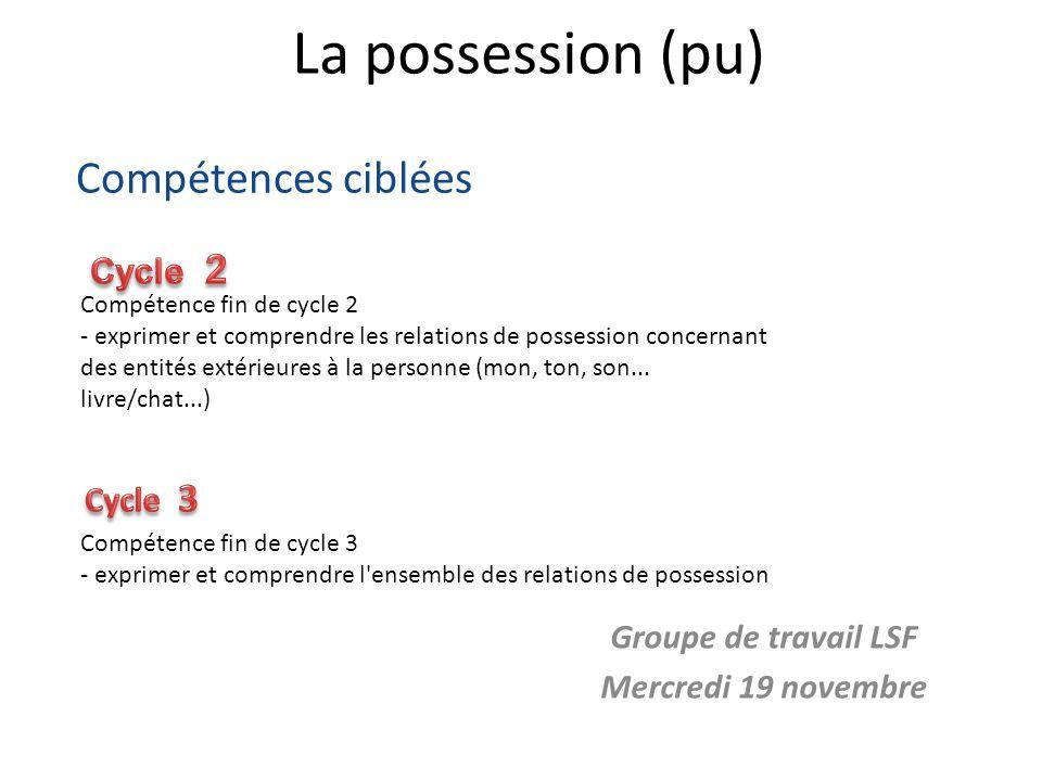 La possession (pu) Groupe de travail LSF Mercredi 19 novembre Compétence fin de cycle 3 - exprimer et comprendre l'ensemble des relations de possessio