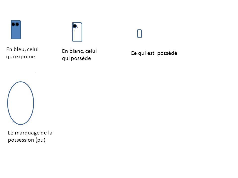 En bleu, celui qui exprime En blanc, celui qui possède Ce qui est possédé Le marquage de la possession (pu)