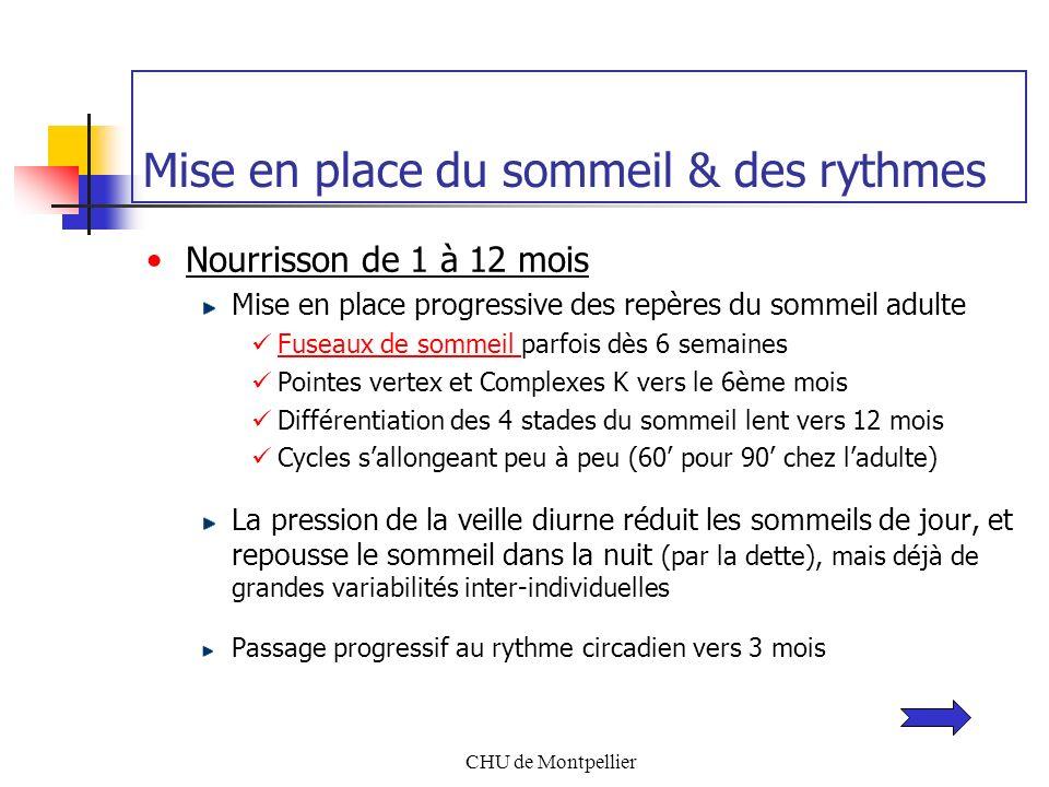 CHU de Montpellier Mise en place du sommeil & des rythmes Nourrisson de 1 à 12 mois Mise en place progressive des repères du sommeil adulte Fuseaux de