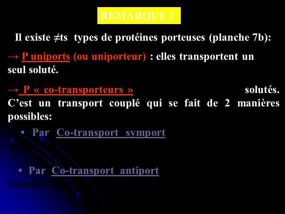 Il existe ts types de protéines porteuses (planche 7b): REMARQUE 1 P uniports (ou uniporteur) : elles transportent un seul soluté. P « co-transporteur