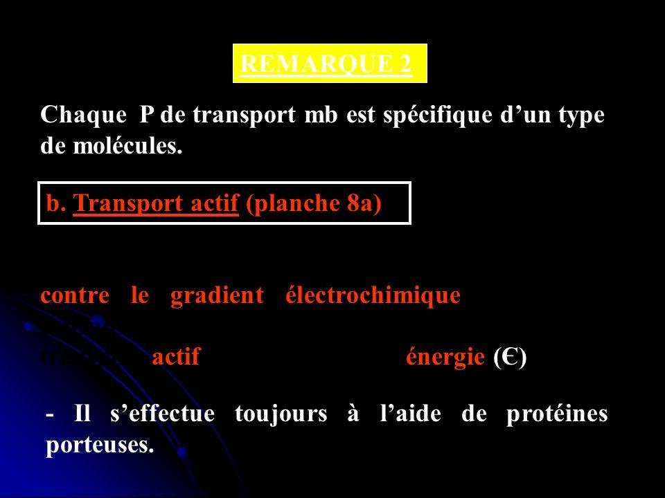 REMARQUE 2 Chaque P de transport mb est spécifique dun type de molécules. b. Transport actif (planche 8a) - Cest le transport de solutés à travers la