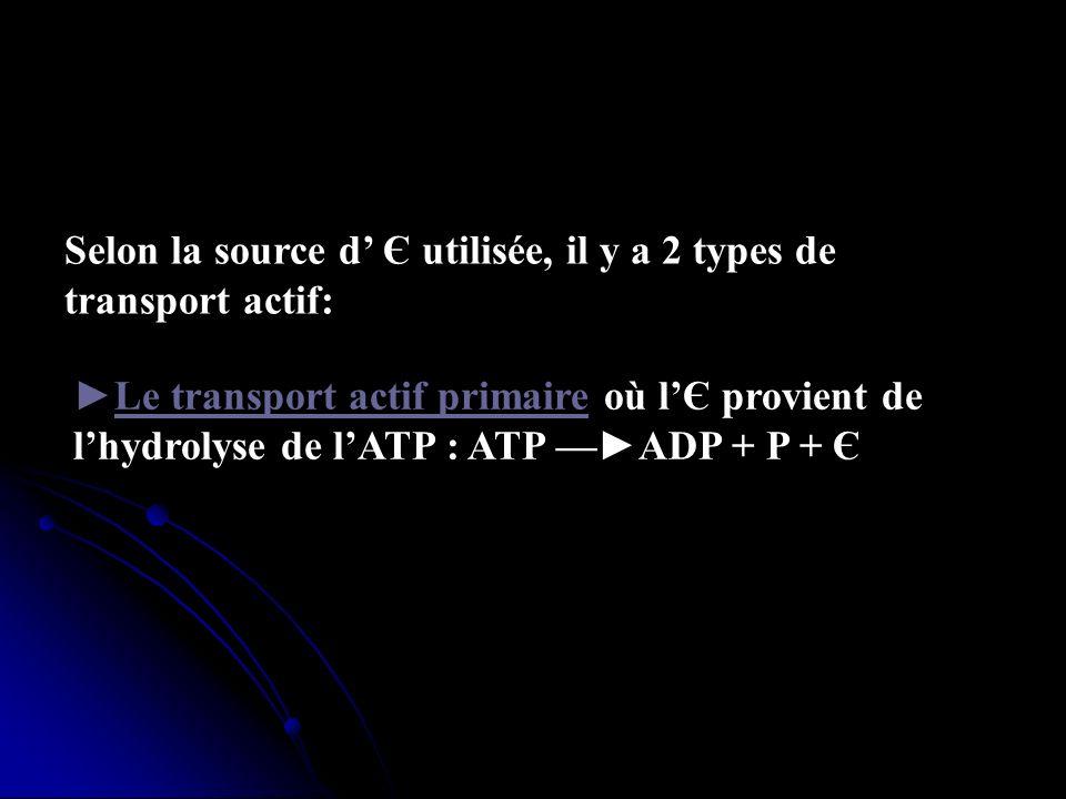 Selon la source d Є utilisée, il y a 2 types de transport actif: Le transport actif primaire où lЄ provient de lhydrolyse de lATP : ATP ADP + P + Є