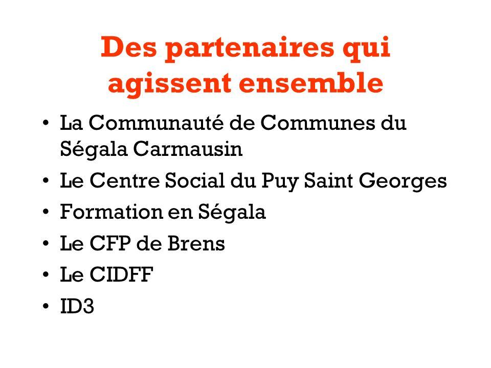 Des partenaires qui agissent ensemble La Communauté de Communes du Ségala Carmausin Le Centre Social du Puy Saint Georges Formation en Ségala Le CFP de Brens Le CIDFF ID3