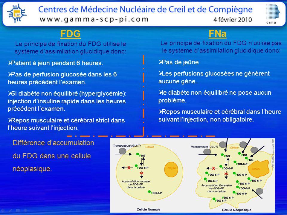 FDG FNa Le principe de fixation du FDG utilise le système dassimilation glucidique donc: Patient à jeun pendant 6 heures. Pas de perfusion glucosée da