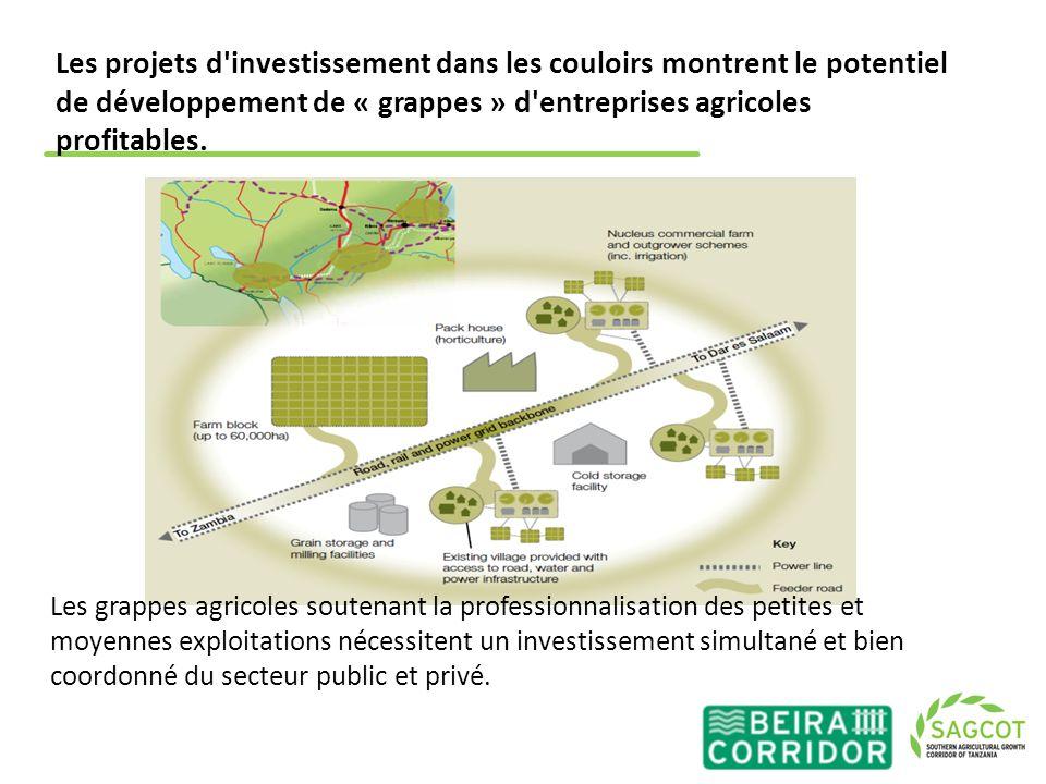 Les projets d'investissement dans les couloirs montrent le potentiel de développement de « grappes » d'entreprises agricoles profitables. Les grappes