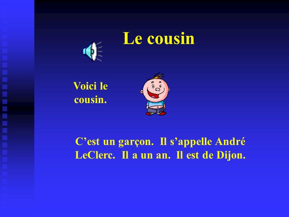 Le cousin Voici le cousin. Cest un garçon. Il sappelle André LeClerc. Il a un an. Il est de Dijon.