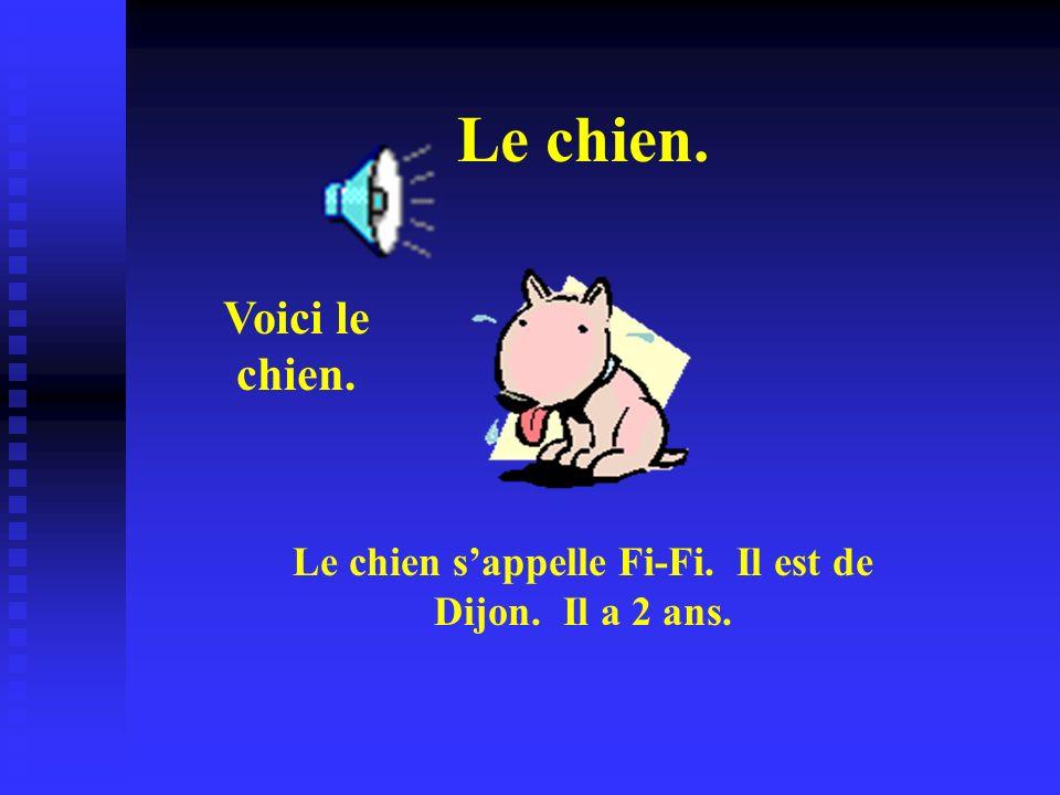 Le chien. Voici le chien. Le chien sappelle Fi-Fi. Il est de Dijon. Il a 2 ans.