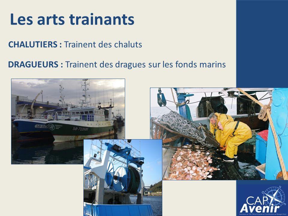 Les arts trainants CHALUTIERS : Trainent des chaluts DRAGUEURS : Trainent des dragues sur les fonds marins