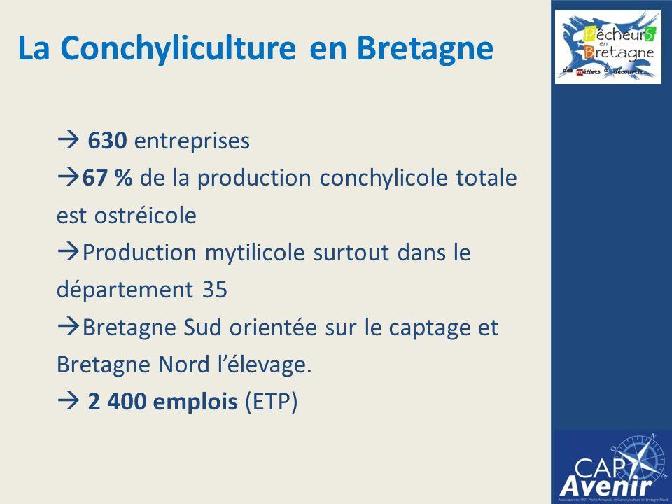 630 entreprises 67 % de la production conchylicole totale est ostréicole Production mytilicole surtout dans le département 35 Bretagne Sud orientée sur le captage et Bretagne Nord lélevage.