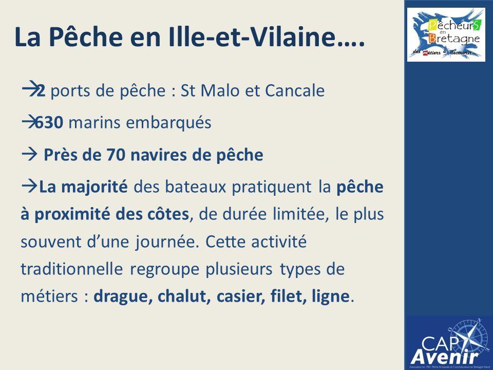 La Pêche en Ille-et-Vilaine….