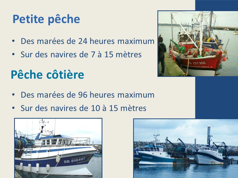 Petite pêche Pêche côtière Des marées de 24 heures maximum Sur des navires de 7 à 15 mètres Des marées de 96 heures maximum Sur des navires de 10 à 15 mètres