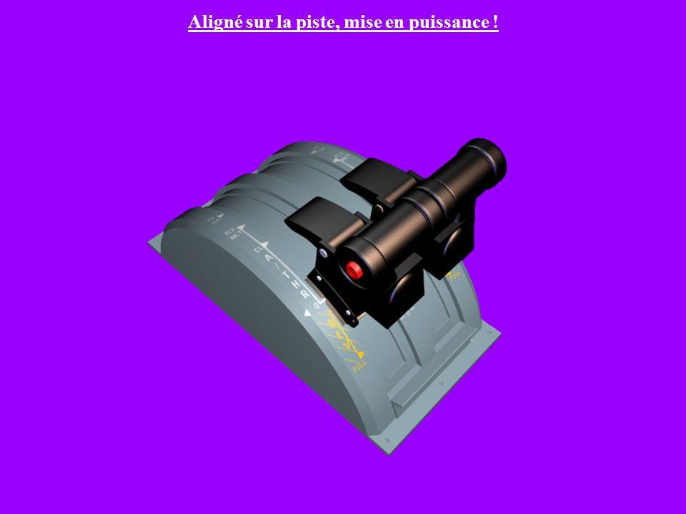 Manettes de poussée (Thrust Levers) Différents « crans » ou « detents » en anglais. TO/GA: Poussée de décollage ou remise des gaz. FLX/MCT: Poussée ré