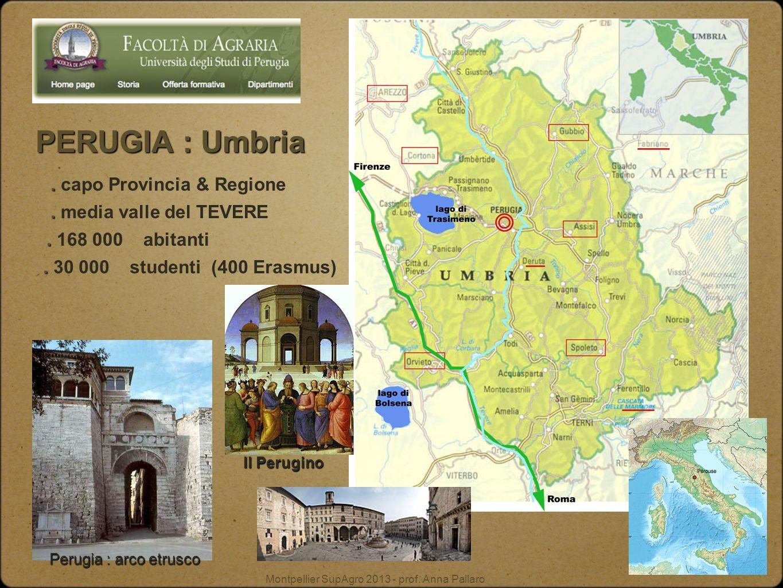 Montpellier SupAgro 2013 - prof. Anna Pallaro Perugia : arco etrusco PERUGIA :Umbria PERUGIA : Umbria.. capo Provincia & Regione.. media valle del TEV
