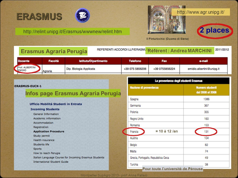 Montpellier SupAgro 2013 - prof. Anna Pallaro ERASMUS = 10 à 12 /an Pour toute luniversité de Pérouse http://relint.unipg.it/Erasmus/wwwnew/relint.htm