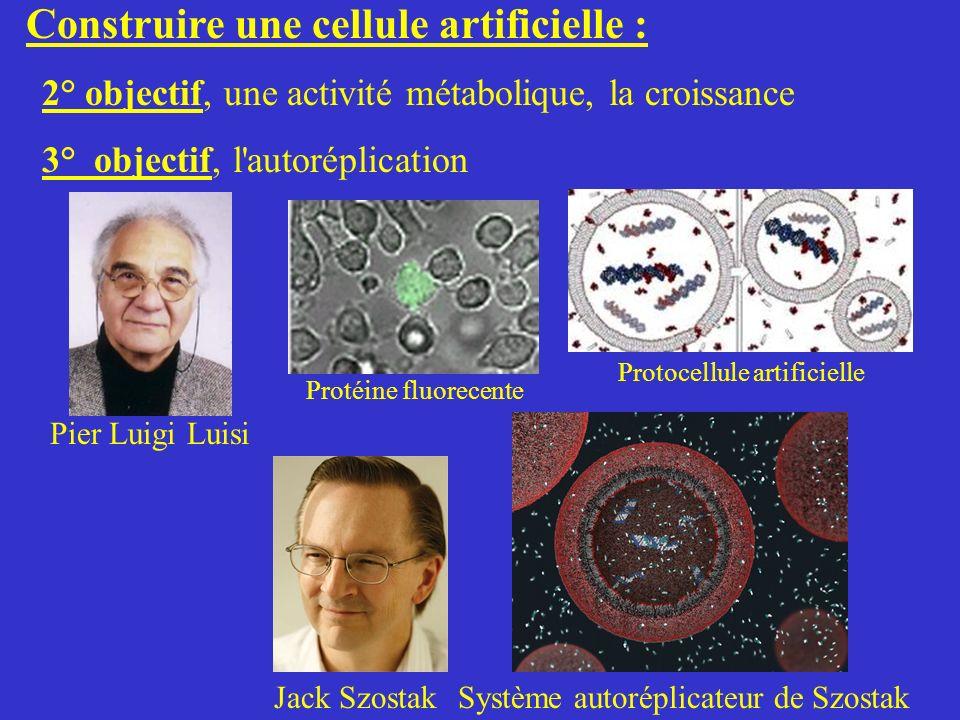Construire une cellule artificielle : 2° objectif, une activité métabolique, la croissance 3° objectif, l'autoréplication Jack SzostakSystème autorépl